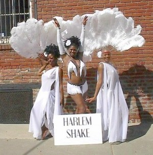 Harlem Shake Ostrich Feather Fans